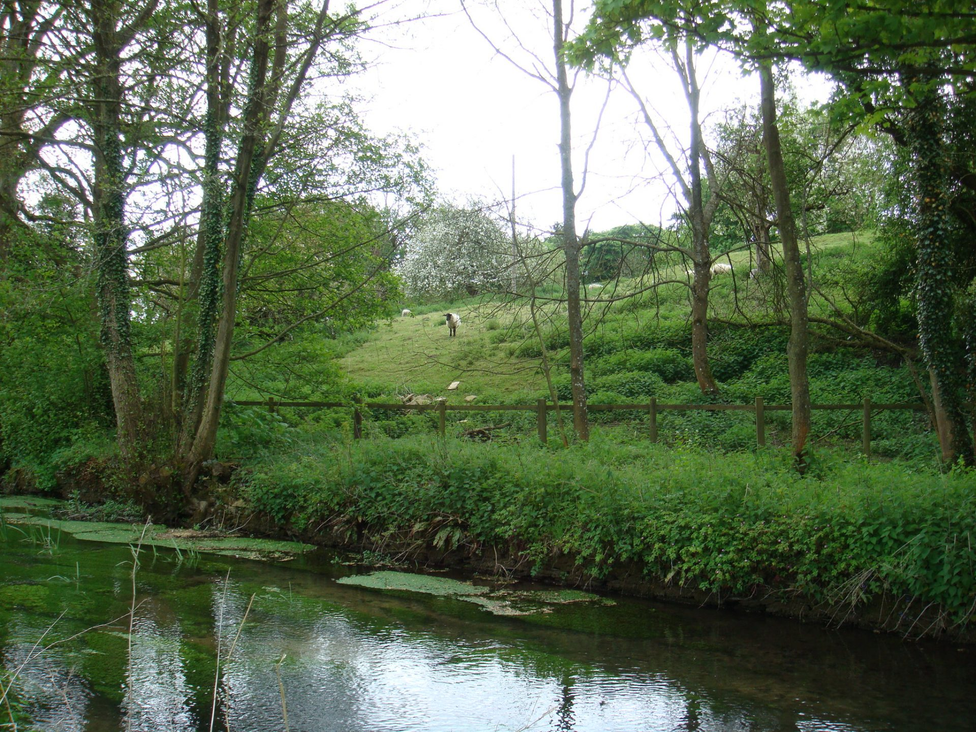 "An idyllic reverie strangely named ""Upper Slaughter"""