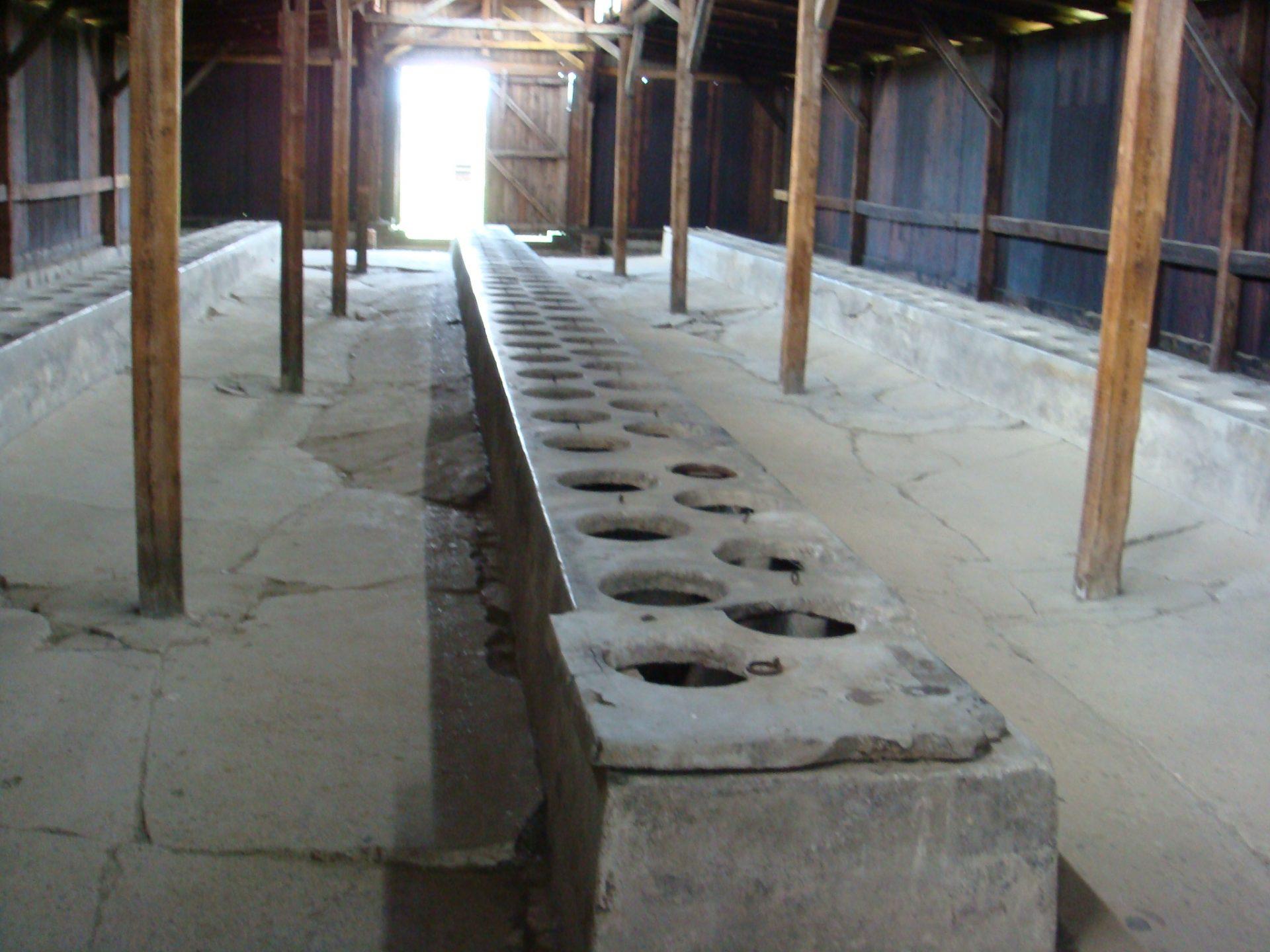 Latrines at the back of that same Birkenau block