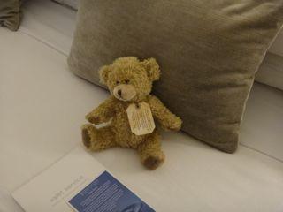 George the Teddy Bear