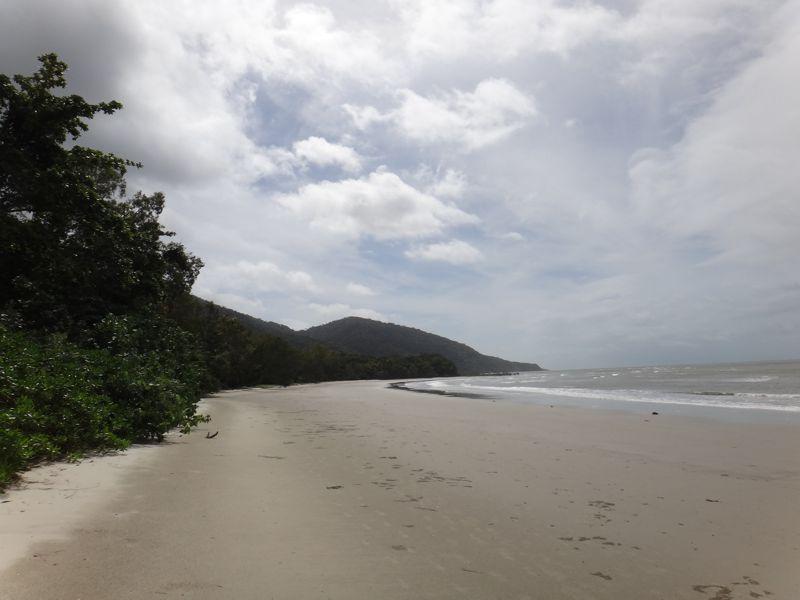 Cape Tribulation 2