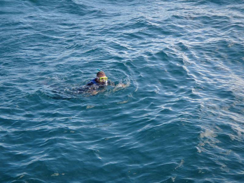 rogie snorkel 3