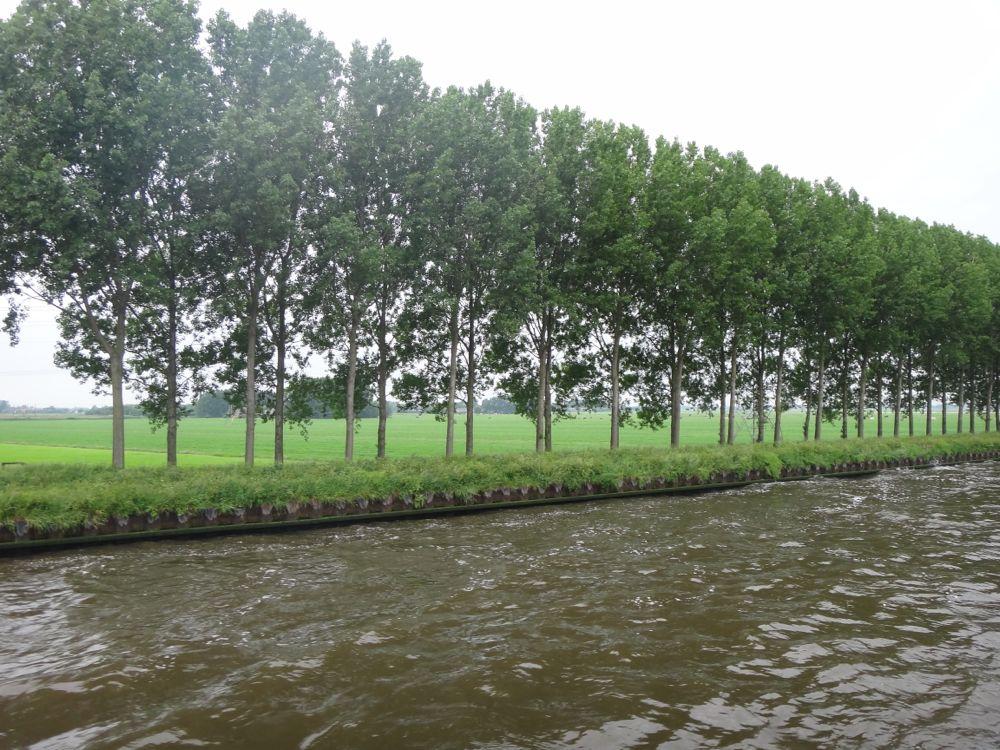 Netherlands countryside
