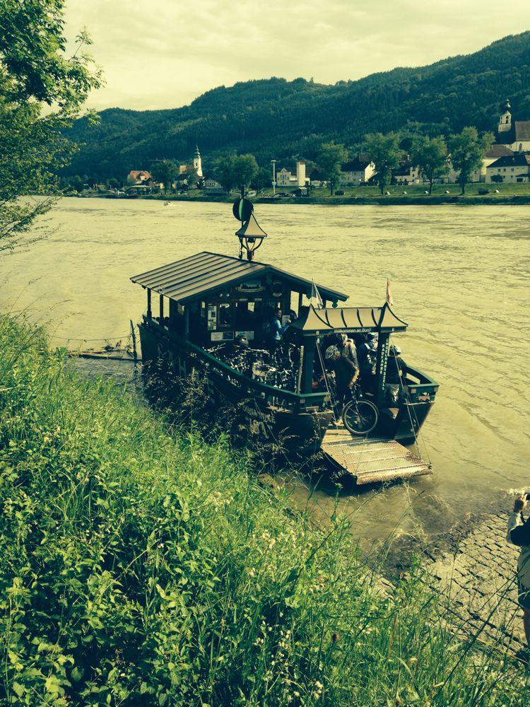 Bike ferry across the Danube 2