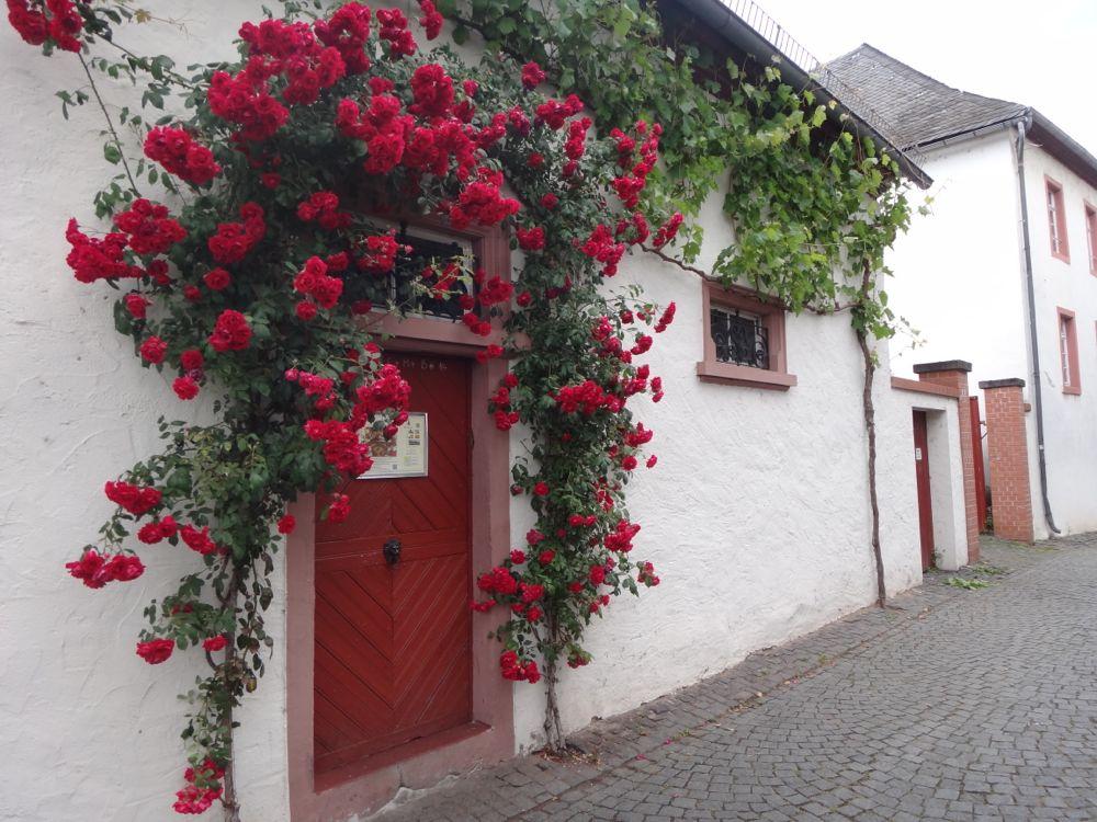 Roses in doorway in Rudesheim