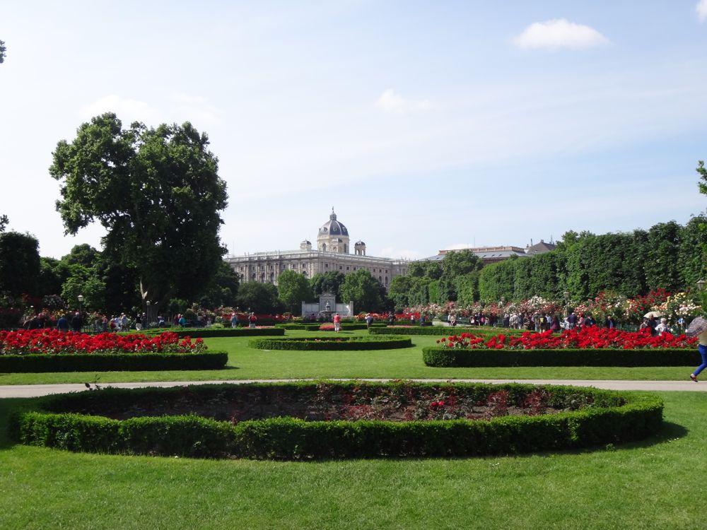 Rose garden Vienna